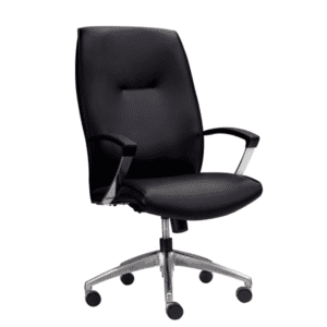 Leo 5001 Contemporary Black high Back Executive Chair - m