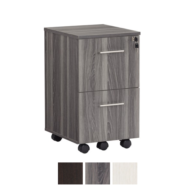 Steel Gray Finish - 2-Drawer Filing Cabinet