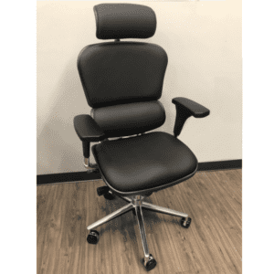 Raynor Eurotech Seating Ergo Human High Back Black Leather Executive Chairs - Model LE9ERG - AW Office Furniture