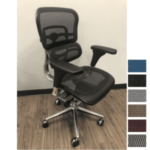 Raynor Eurotech Seating Ergo Human Mid Back Black Mesh Executive Chair - Anderson & Worth Office Furniture -- Model LE8ERG