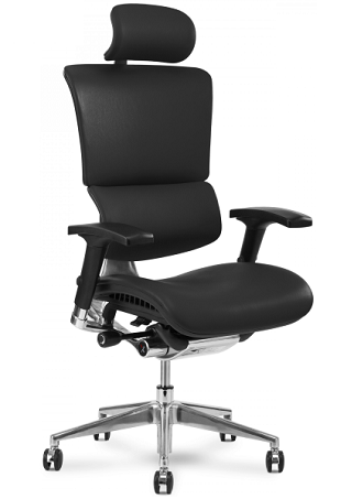 X-chair for the office