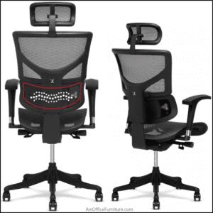 X Chair Choosing Factors